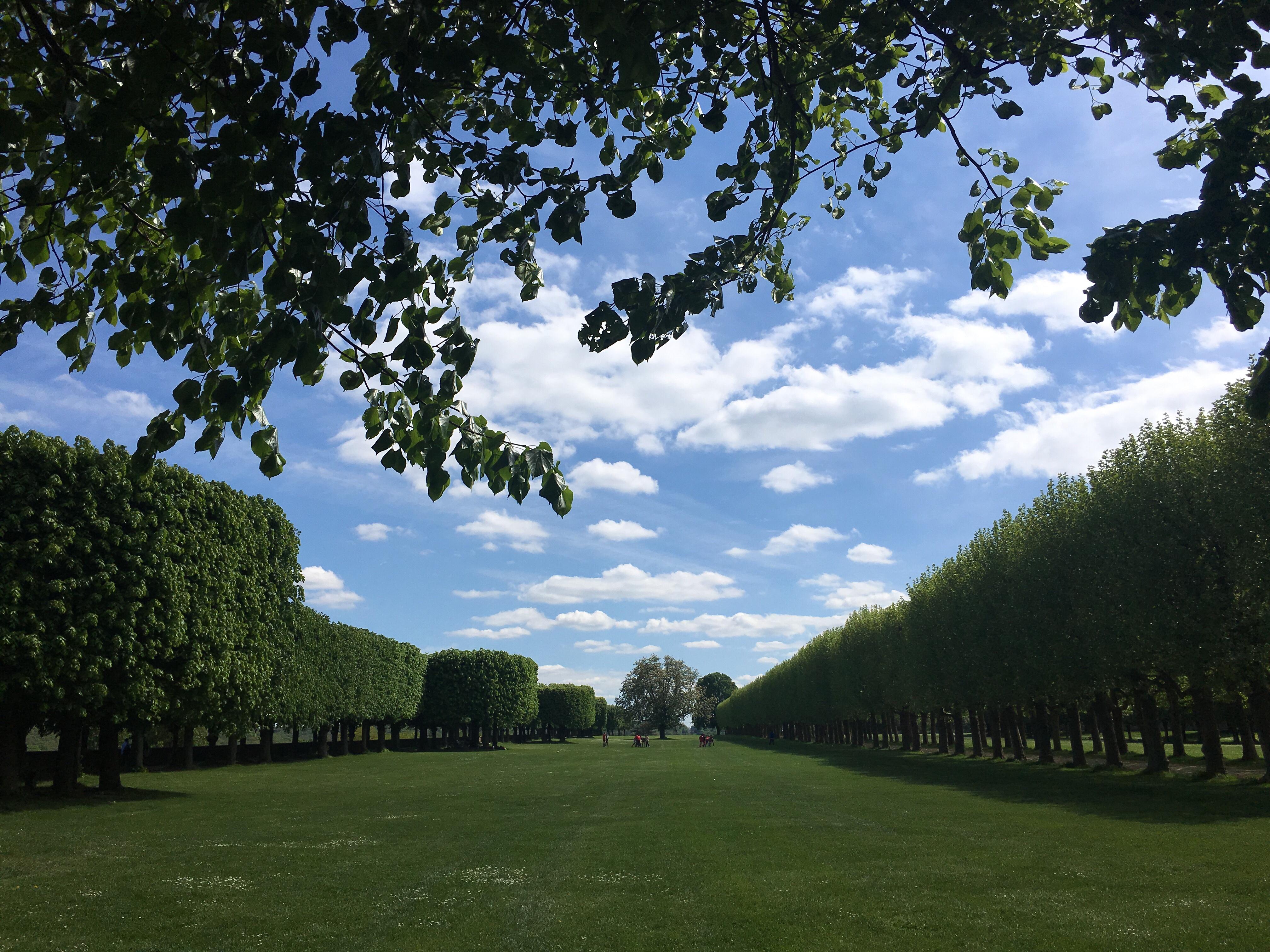 Meudon Park clouds trees blue skies