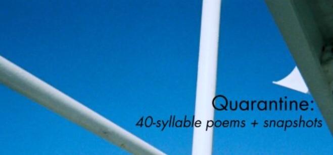 Quarantine book of poems cover